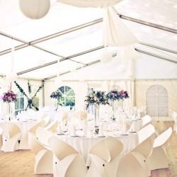 Inchiriere scaune nunti